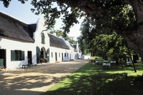 Cape Town: Constantia winelands